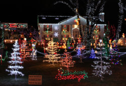 Jul i USA